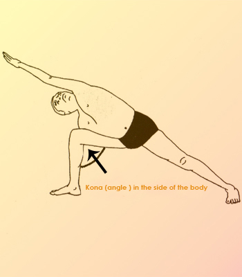 Iyengar Yoga India
