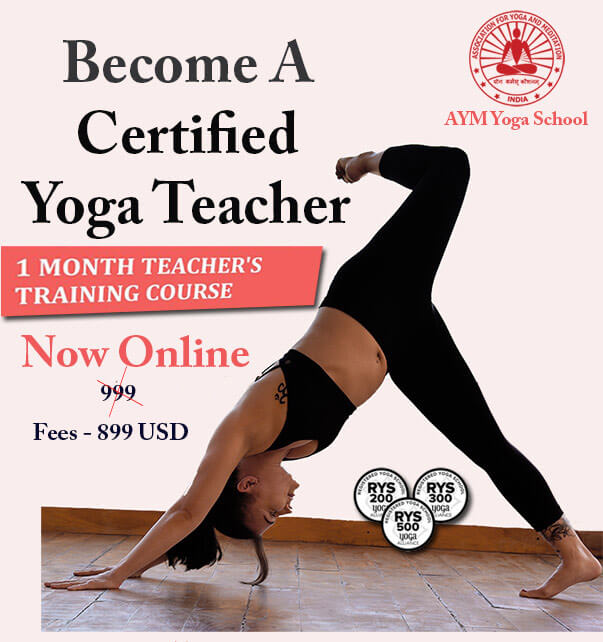 Online Yoga Courses In India Yoga Certification Online In India