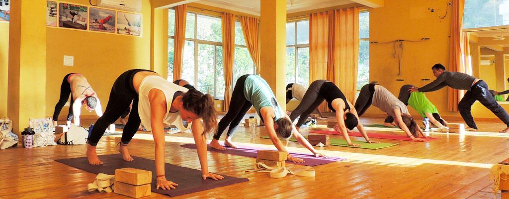 Image result for Yoga Teacher Training in Rishikesh