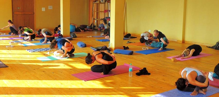 yoga center in rishikesh